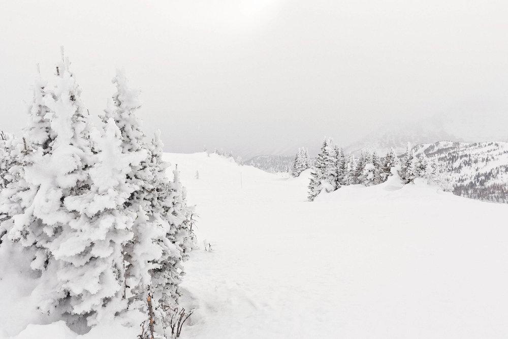 ckanani-banff-winter-a-guide-to-visiting-48.jpg