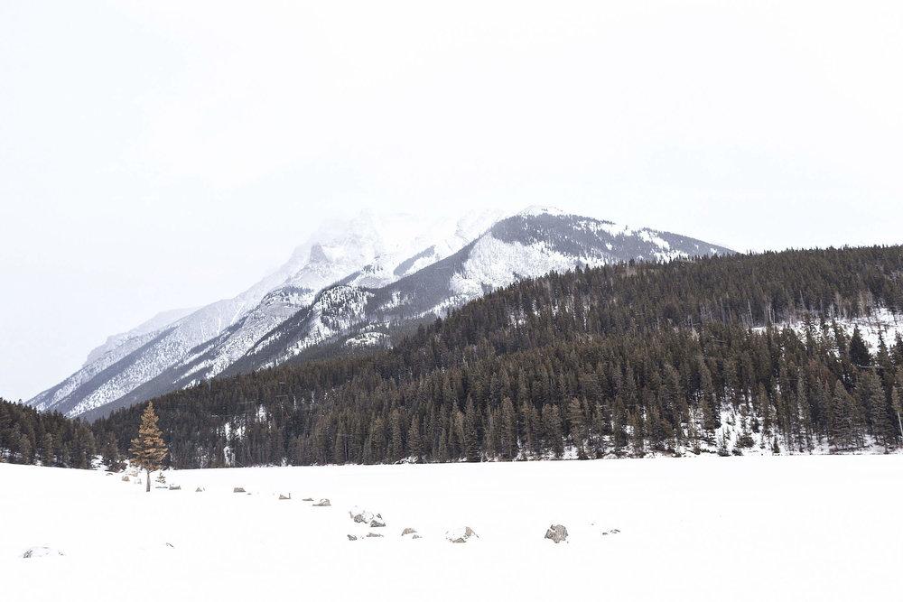 ckanani-banff-winter-a-guide-to-visiting-81.jpg