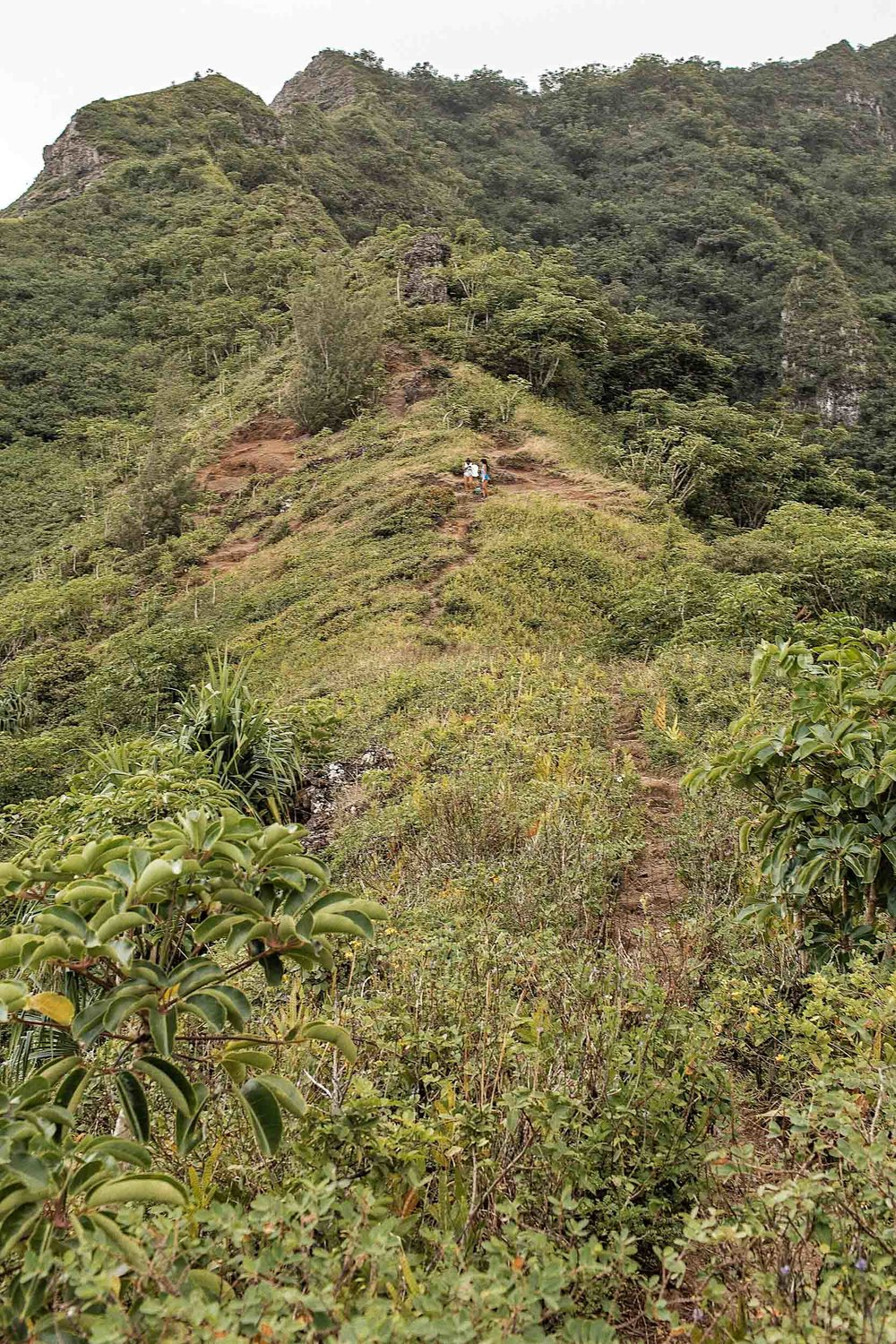 Steep inclines during the Crouching Lion Hike