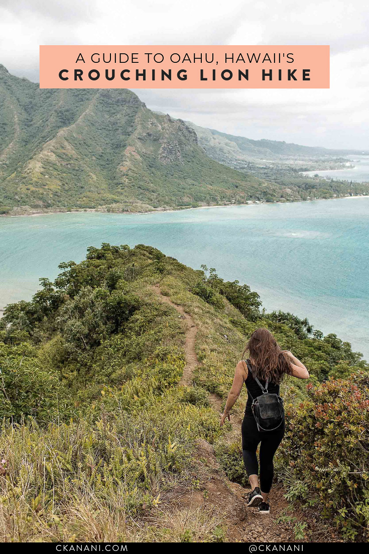 The Crouching Lion Hike Oahu is one of the best hikes in Hawaii. Here is everything you need to know before you go! #oahu #hawaii #hiking #crouchinglion #travelguide