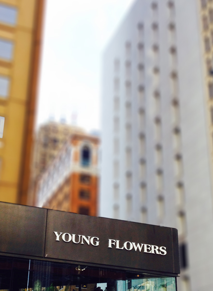 """Young Flowers"" Photo: John Michael Gill. 2014."