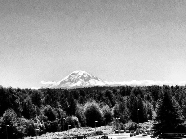 I have a weird attraction/fascination with Mt. Rainier. I look for it everyday that the sun shines.