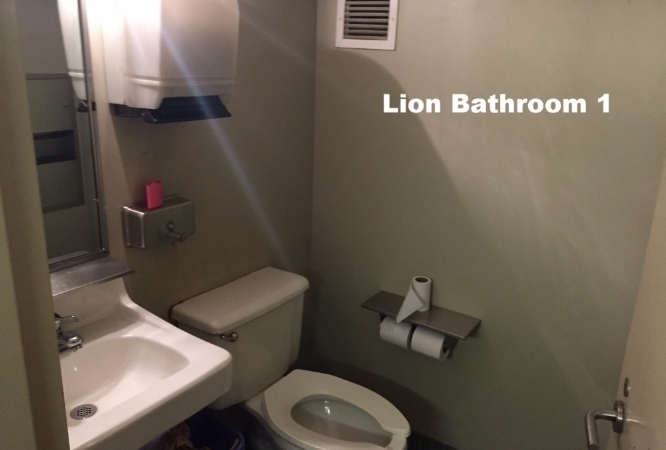 LionBath2.JPG