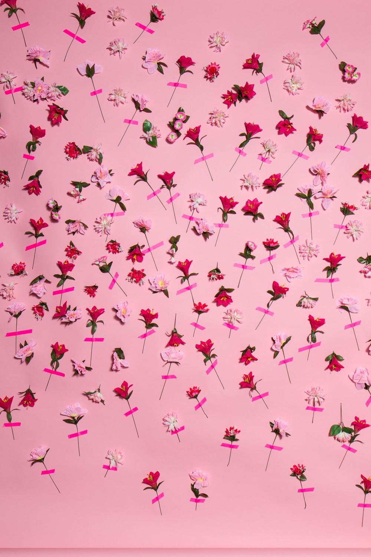 48_PinkPartyPhotoBooth_0402.jpg