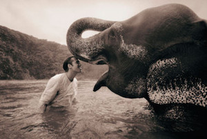This & all following images from the series  Ashes & Snow  by Gregory Colbert.