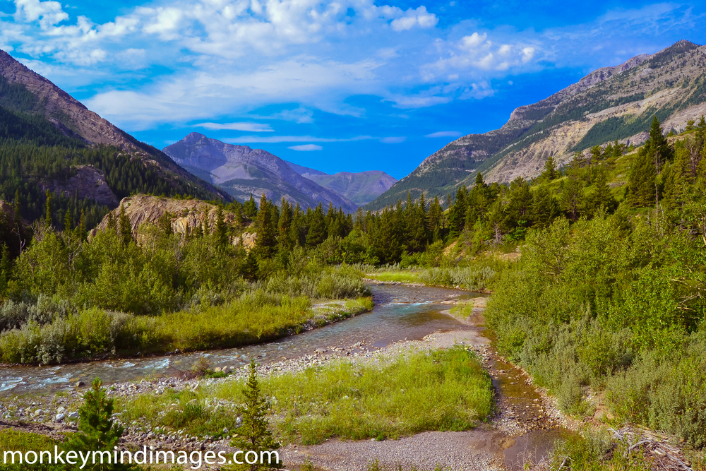 Day Two along the South Fork Birch Creek Trail. Not just another day at the office.