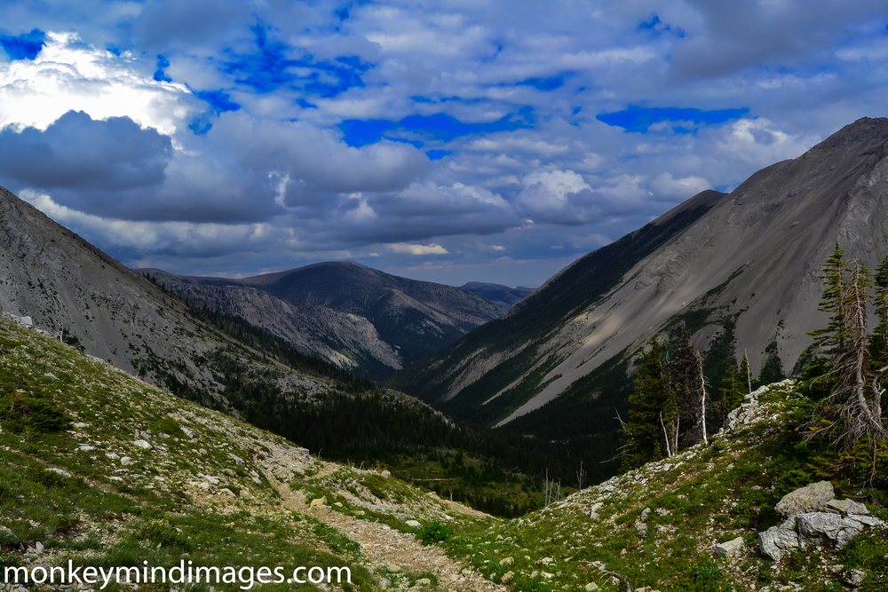 From Badger Pass///