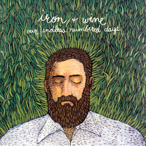 iron and wine our endless numbered days