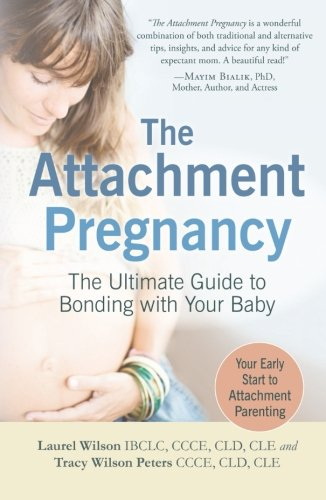 attachment pregnancy laurel wilson