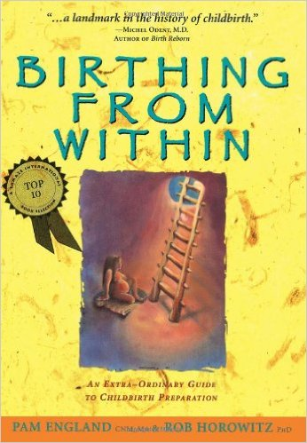 birthing from within pam england