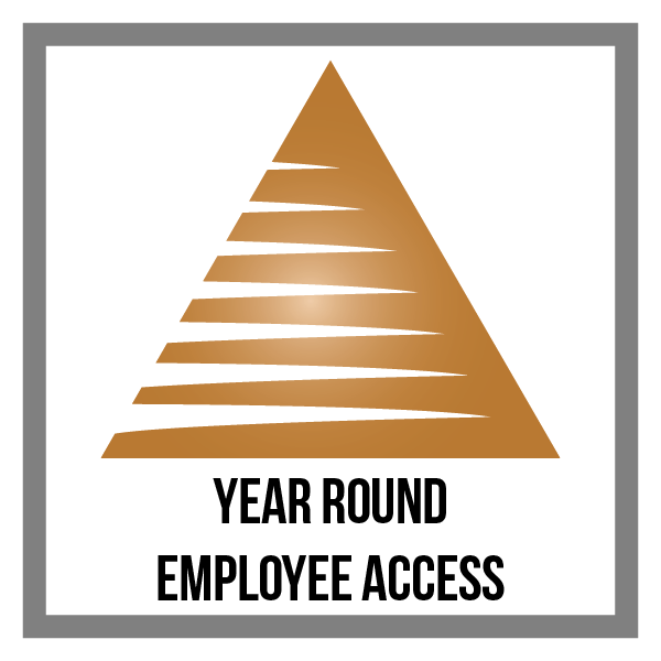 triangle_1-01_ACCESS.png