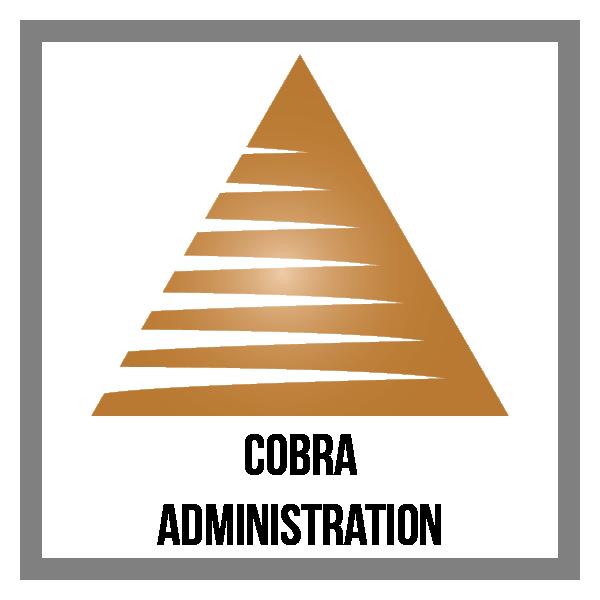 triangle_1-01_COBRA.png