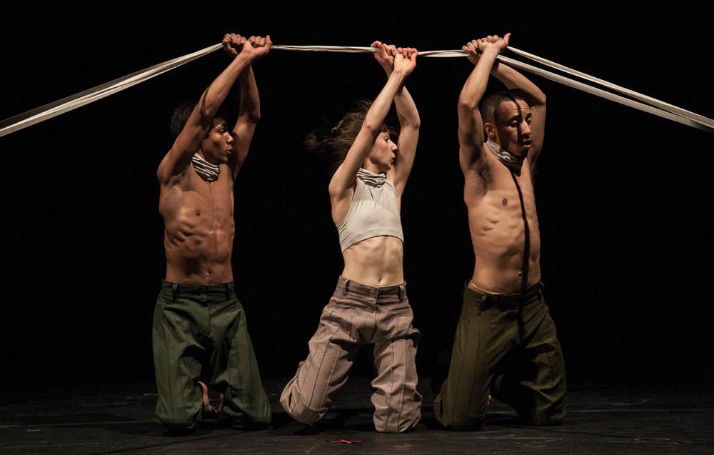 Festival de dança de Joinville - Cia. Matheus Brusa  Coreografia: Gaudério
