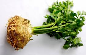 celery root.jpg