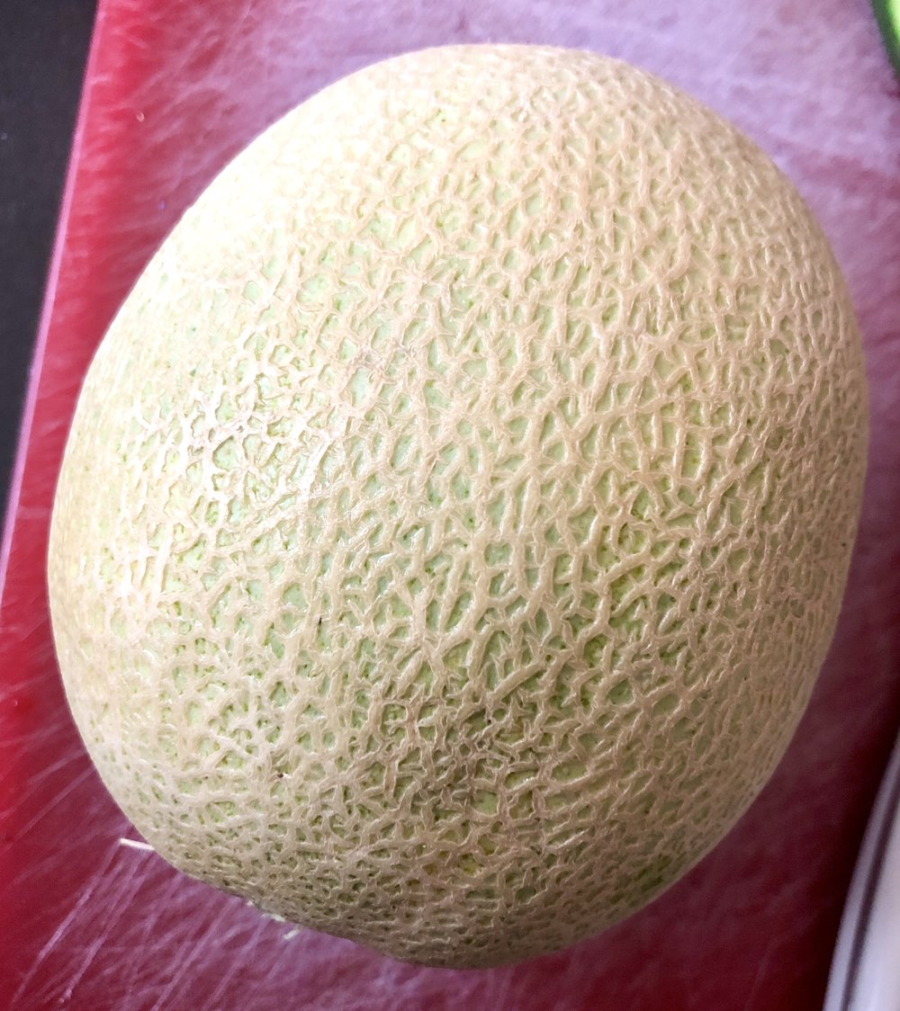 Cantaloupe whole.jpg
