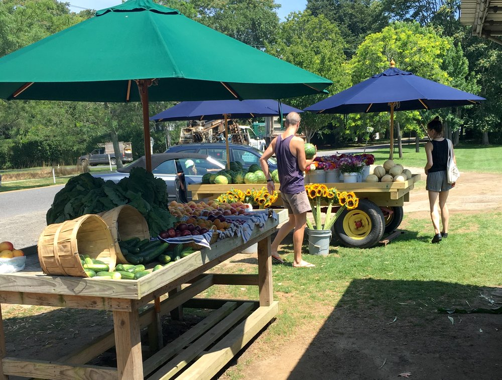 Hamptons Farmers Market display.jpg