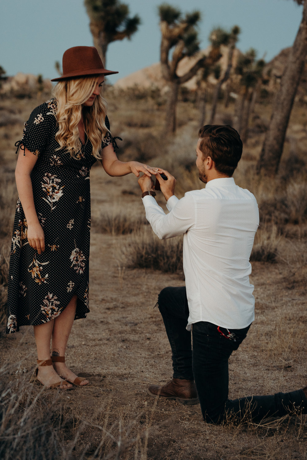 joshuatreeproposal-31.jpg