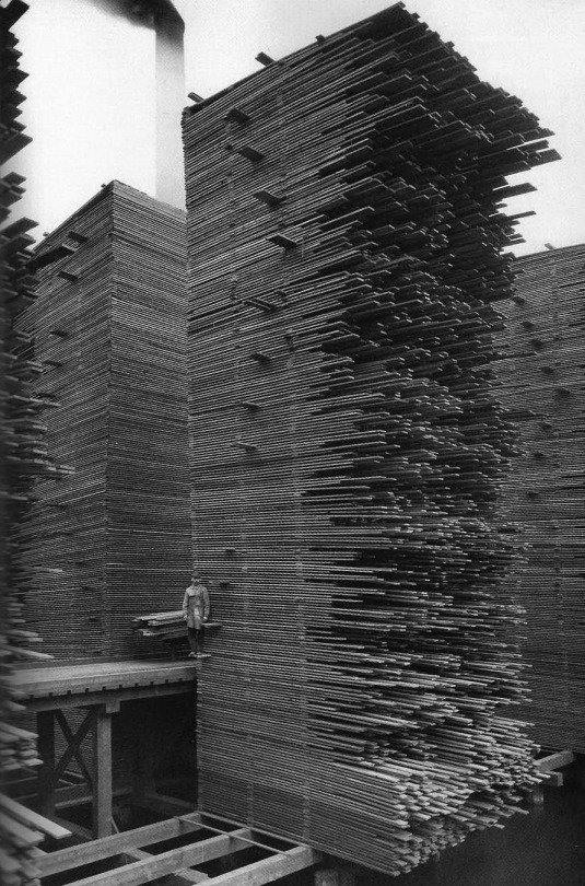 A man stand snext to the stacks of lumber at Cedar Mill, Seattle by Unknown, 1919