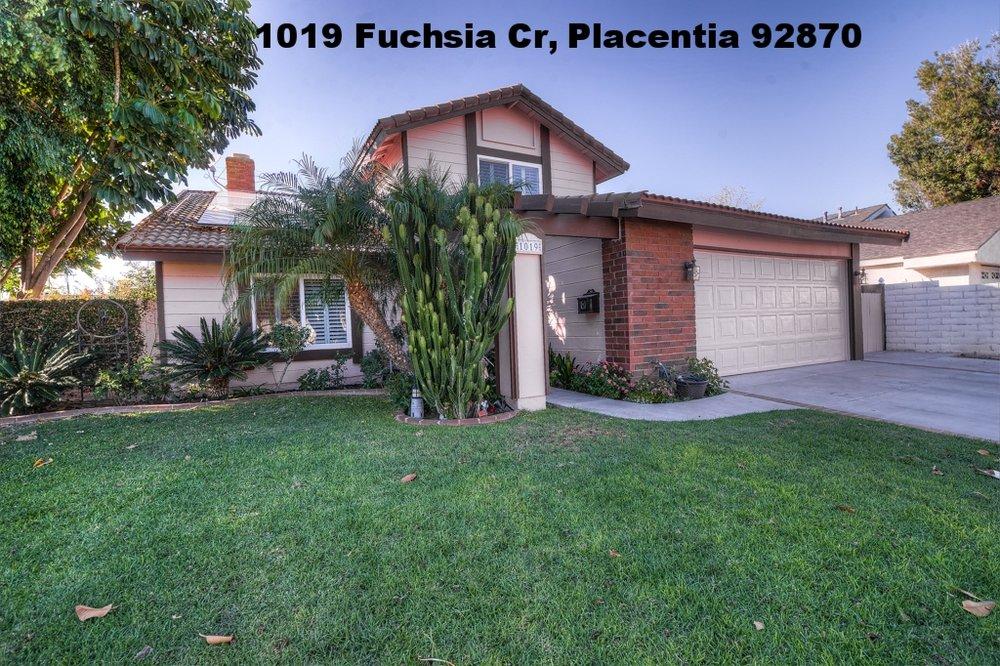 1019-fuchsia-cir-placentia