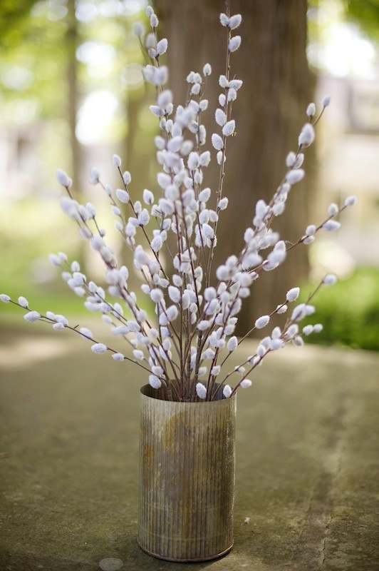 Clippings of budding branches around your property can keep your spaces light and fresh with the spring feel