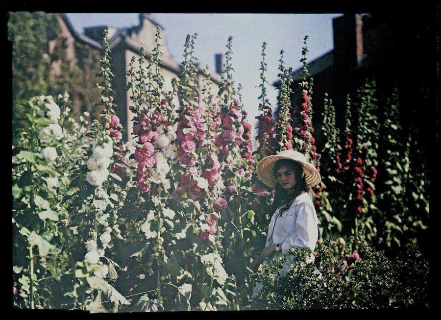 Etheldra-Laing-autochrome-Janet.jpg