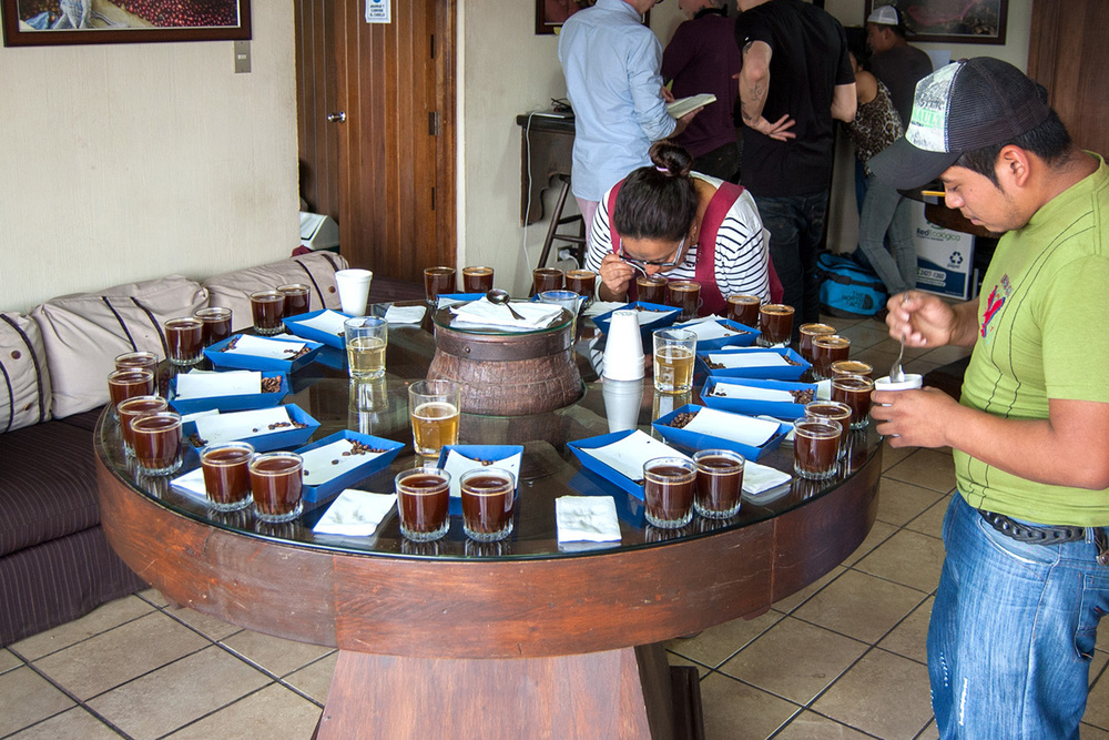 Cupping table at Finca BellaVista.  These 14 samples are from smallholder farmers in the area. Samples are usually prepared in duplicate so if one gets fouled somehow it is pushed forward and evaluation can continue with the remaining coffee.