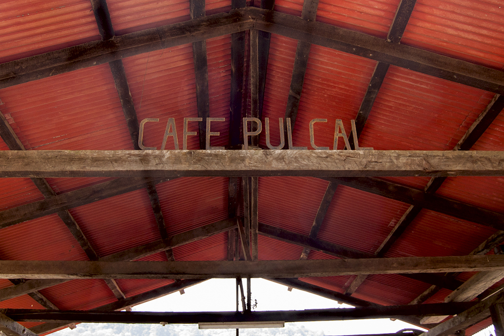 Single-farm coffee grown at Hacienda Carmona is called Cafe Pulcal.  Our own Guatemala Bella Carmona is a mix of beans from two farms.