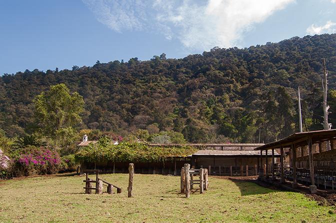 Livestock barn,Hacienda Carmona