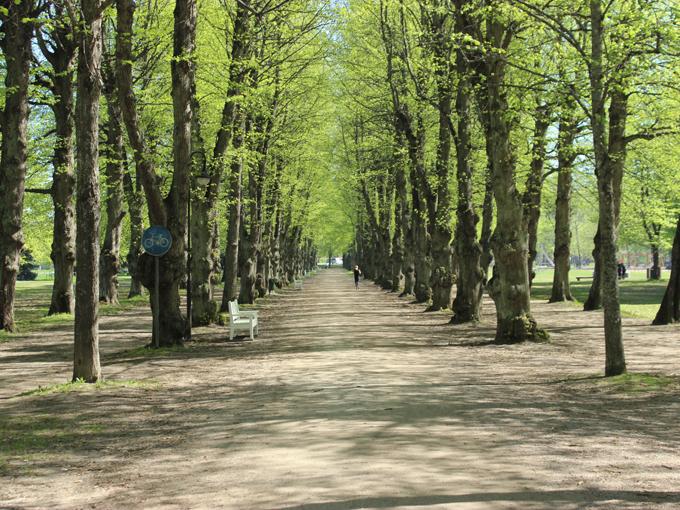 parken_3.jpg