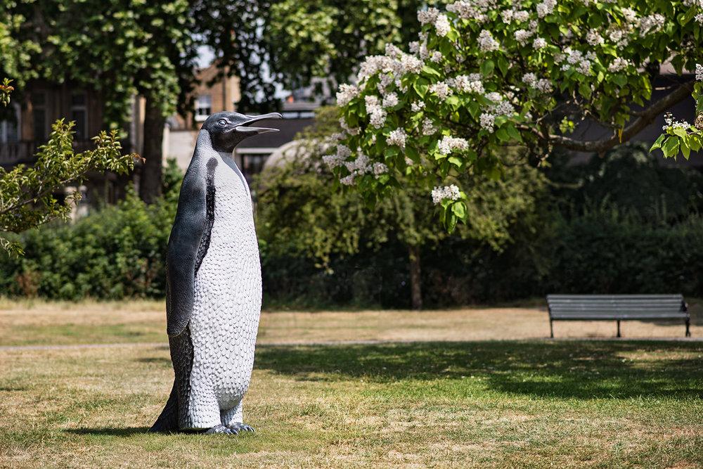 penguin-02.jpg