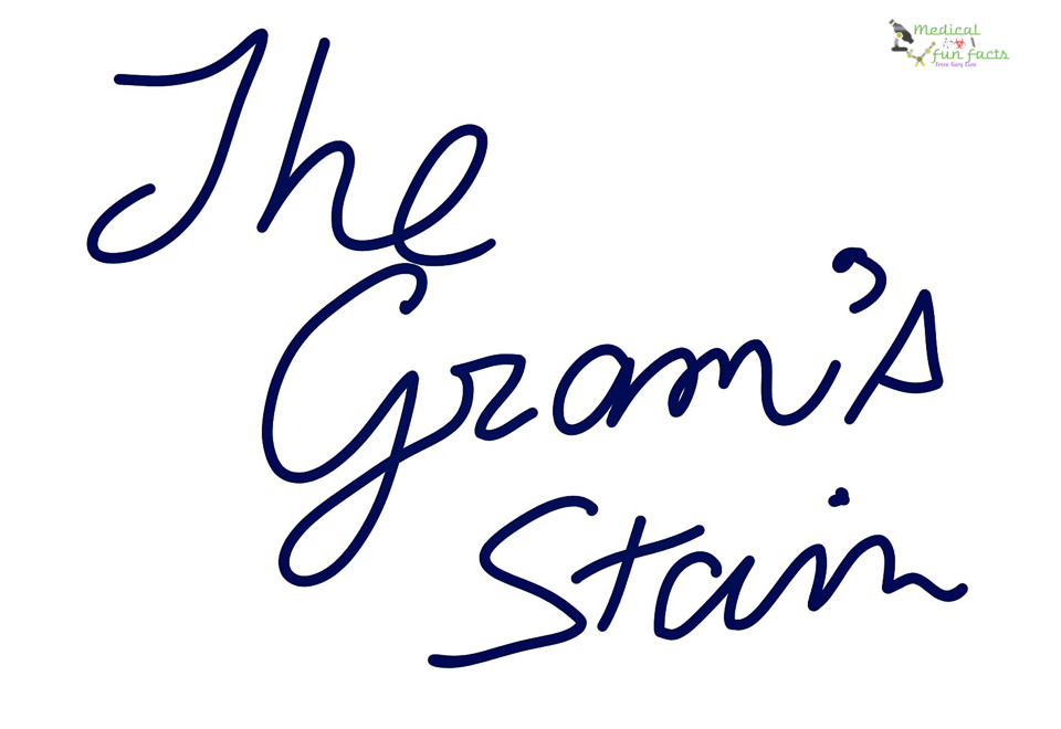 The Gram's stain
