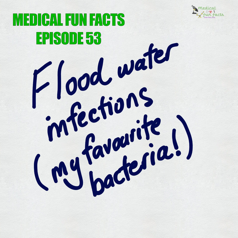 Flood water infections