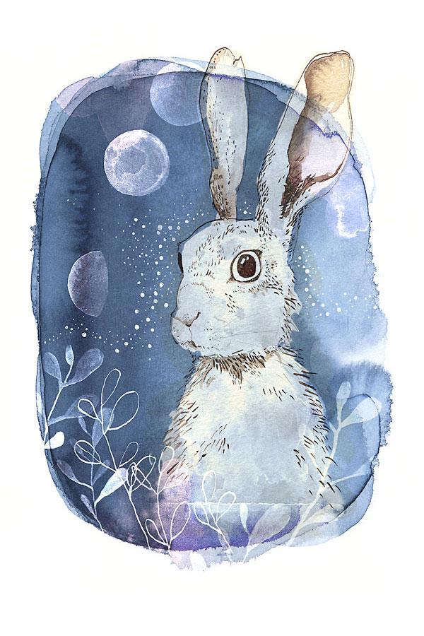 blue_hare.jpg