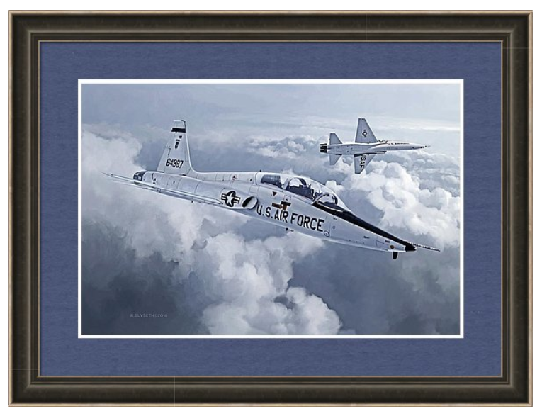 'TALON FLIGHT' R.BLYSETH © 2016 SAMPLE FRAME AND MATTING. PRINT DOES NOT COME FRAMED OR MATTED.