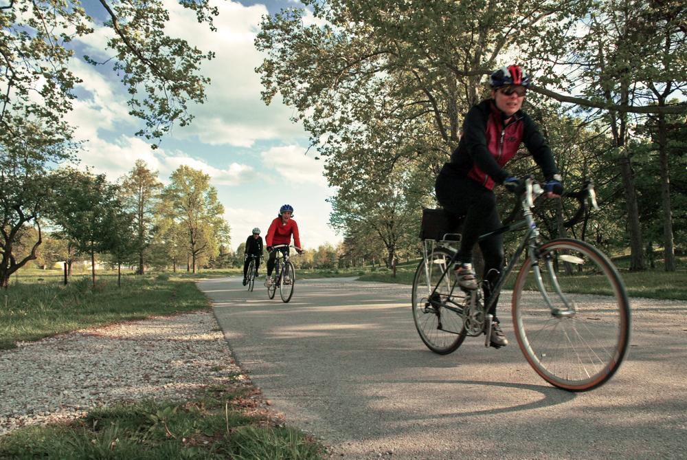 Forest Park Bikes.jpg