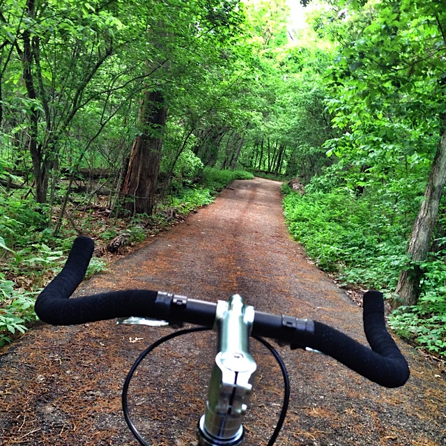 """ Loved this section of the park - made this path a regular part of each ride."""