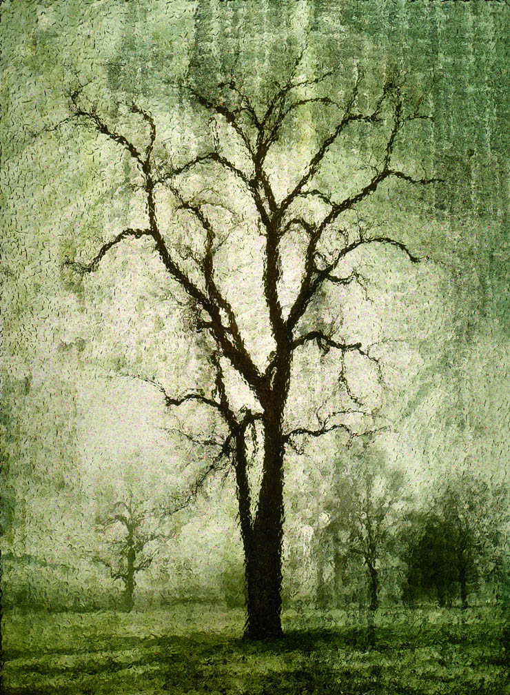 michaeleastman-forestparkforever-4.jpg
