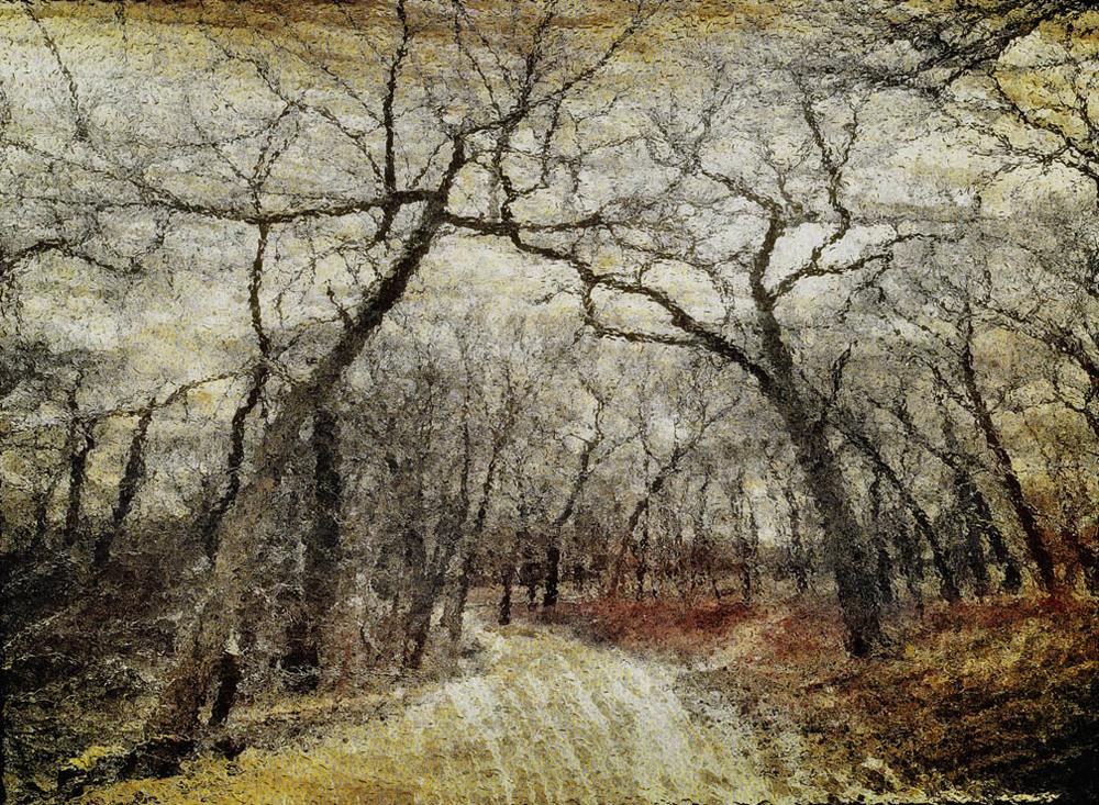 michaeleastman-forestparkforever-12.jpg