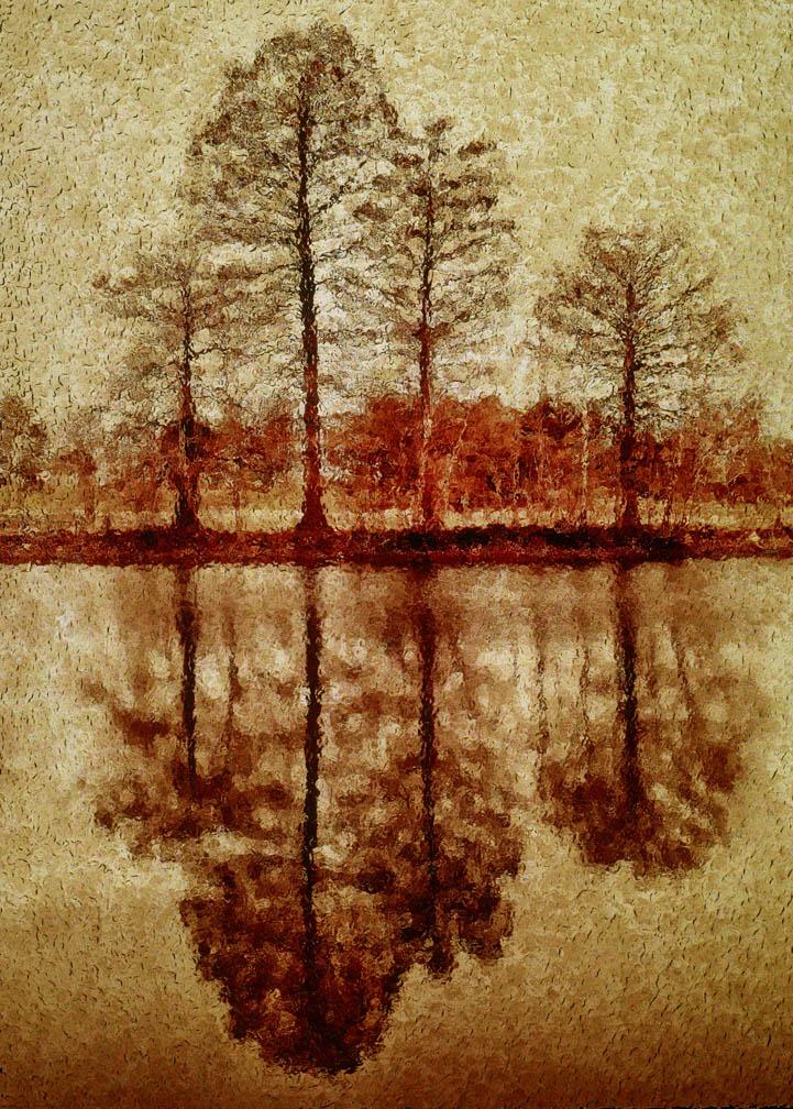 michaeleastman-forestparkforever-14.jpg