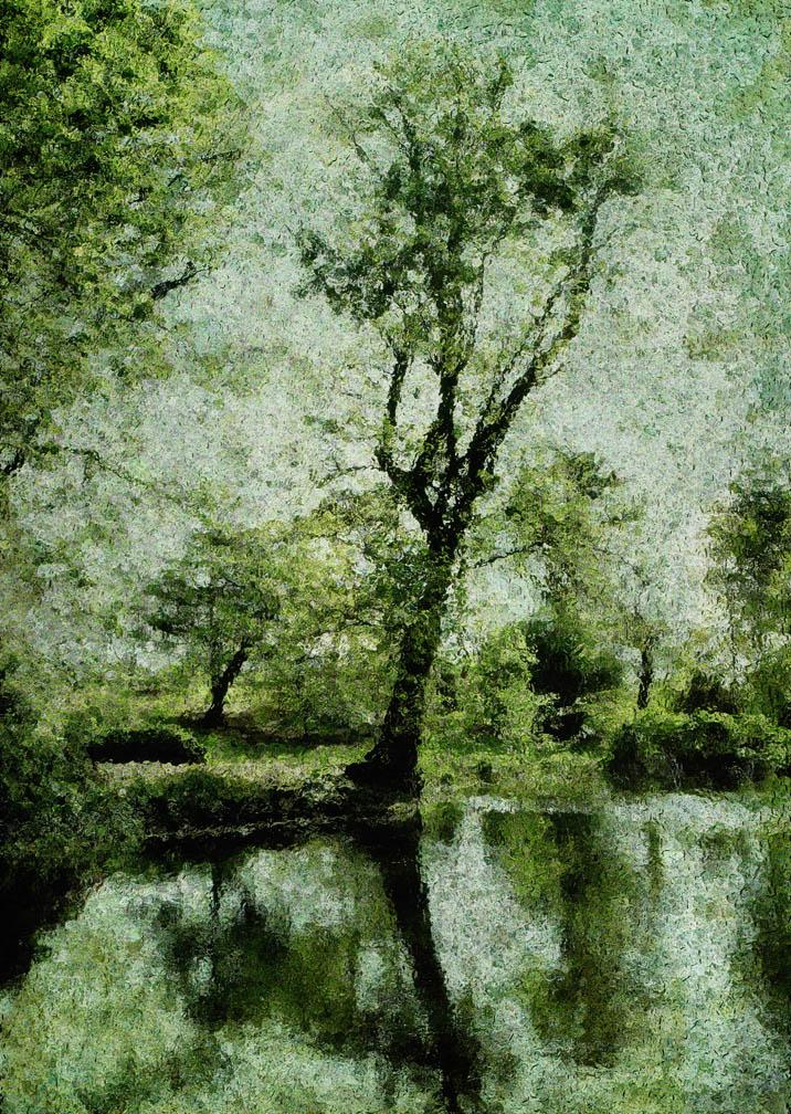 michaeleastman-forestparkforever-23.jpg