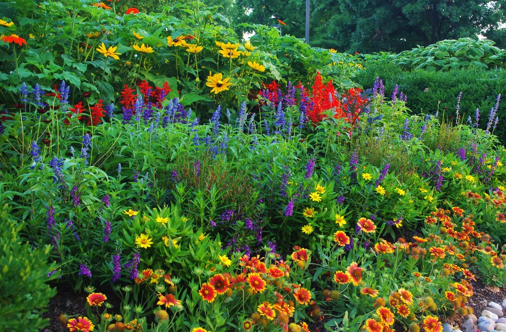 Diversity In Planting Designing For Pollinators In Our 2016 Summer Display Forest Park Forever