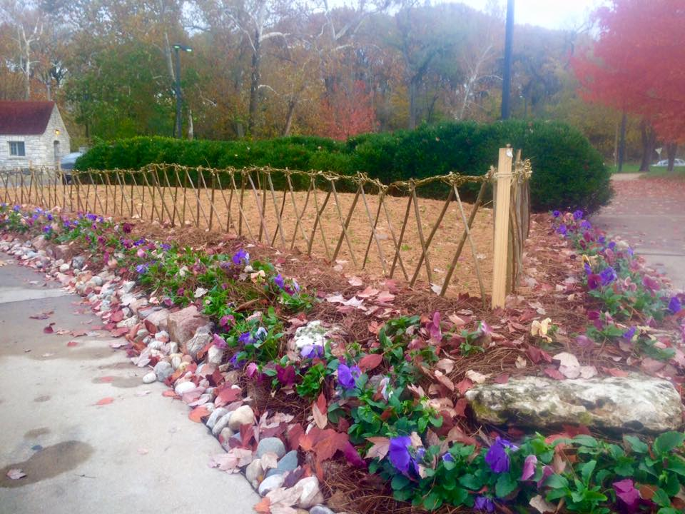 Fedges are creative ways to make artistic natural fences for small gardens.