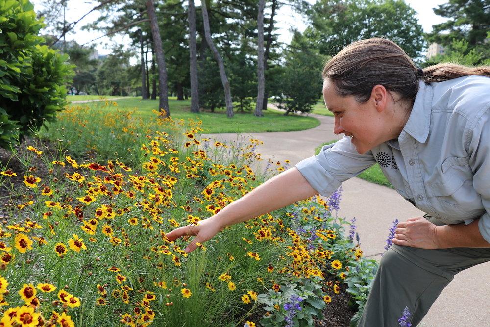 Susan, admiring a pollinator