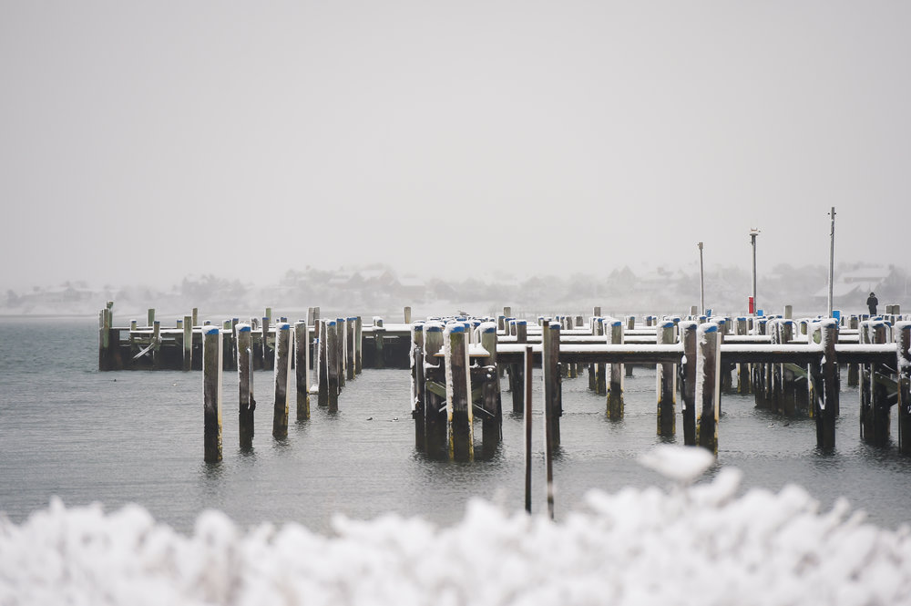 Nantucket Winter Photos (1 of 1)-5.jpg