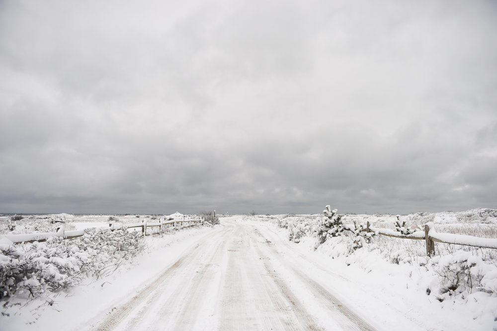 Nantucket Winter Photos (1 of 1)-7.jpg