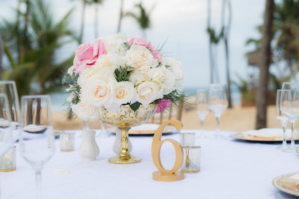 Punta Cana Destination Wedding Reception