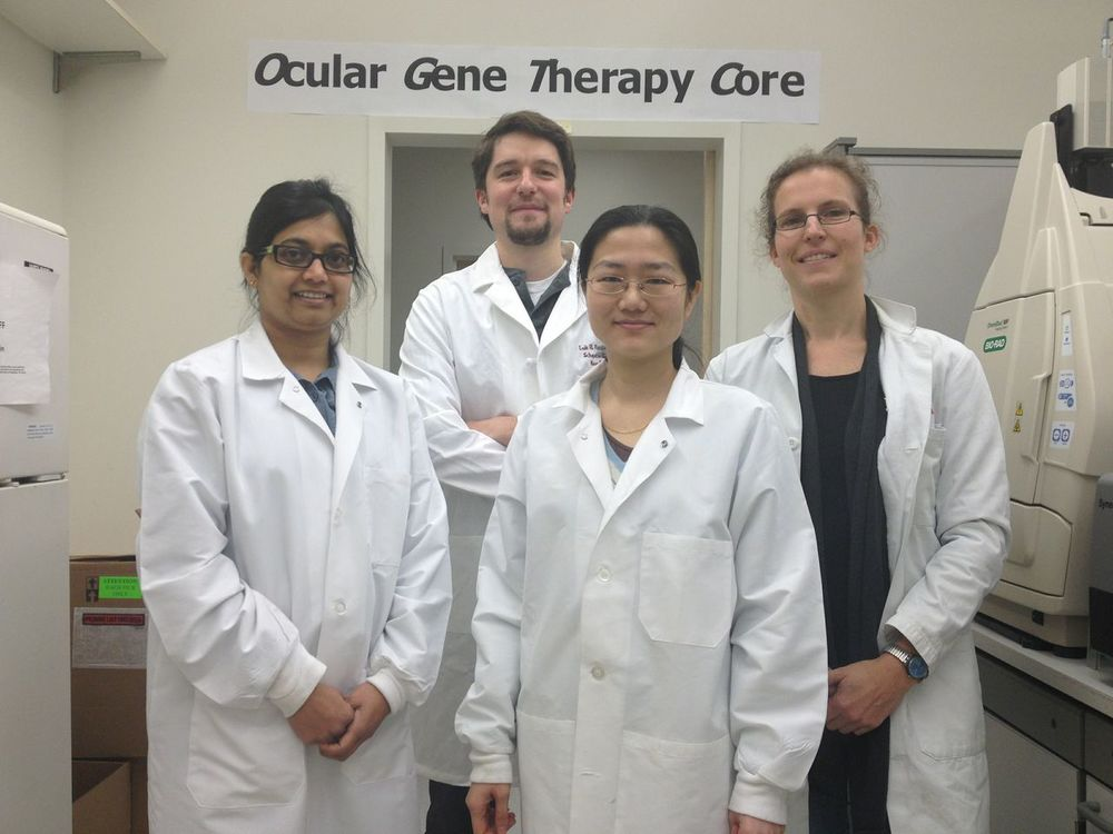 Lab Members from Left to Right: Rajani Shelke, PhD; Luk Vandenberghe, PhD; Ru Xiao, MS, MD; Eva Plovie-Buys, PhD