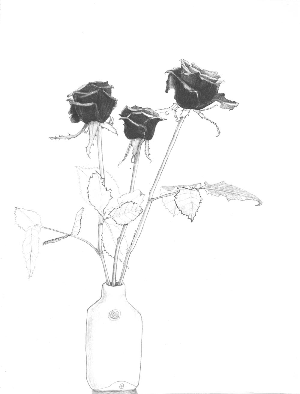 Rachel's Roses.jpg