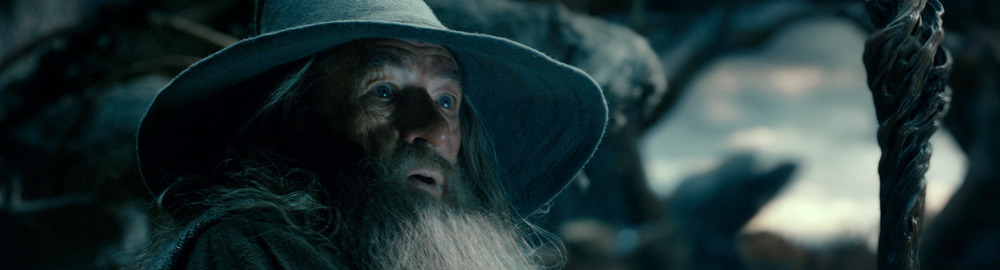 hobbit-desolation-smaug-gandalf.jpg