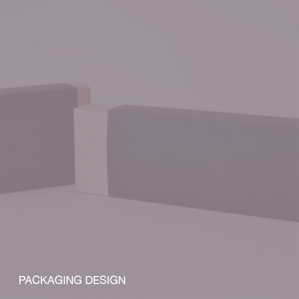 PACKAGING DESIGN1.jpg